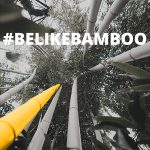 Be Like Bamboo